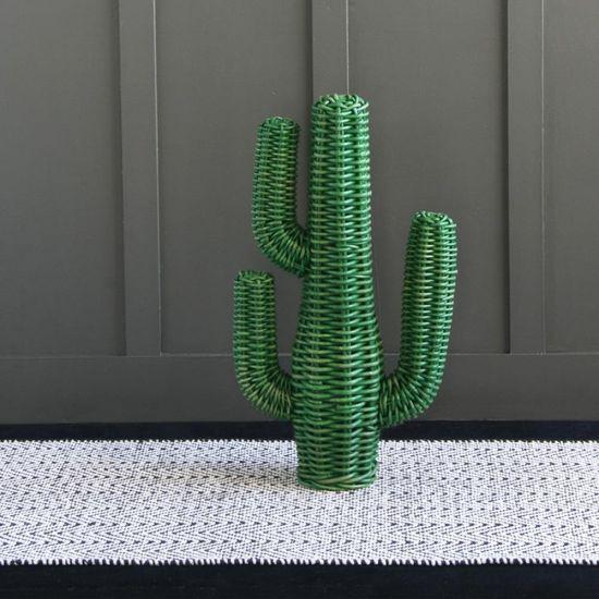 Rattan Cactus