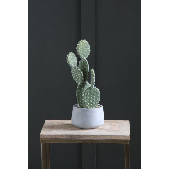 CACTUS ARTIFICIAL PLANT TREE 39 CM IN FOOTED IN CEMENT POT