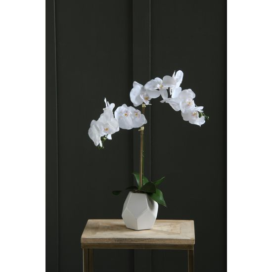 ORCHID ARTIFICIAL PLANT WHITE FLOWER WHITE POT 50 CM