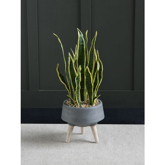 SANSEVIERIA ARTIFICIAL PLANT TREE 74 CM IN FOOTED POT