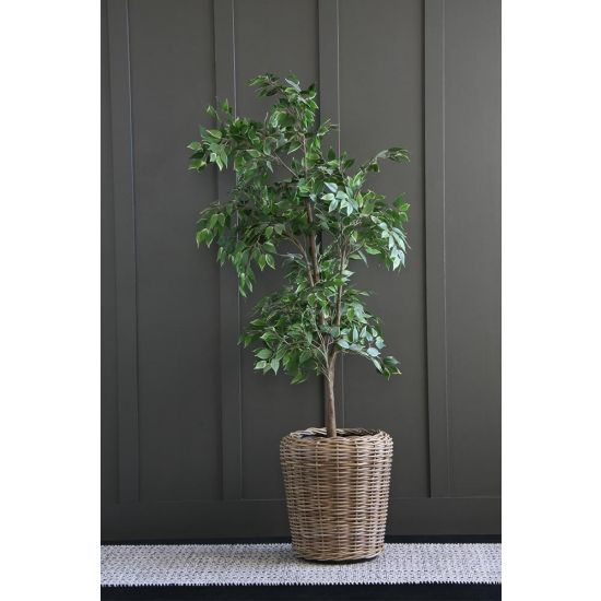 Genoa Planter