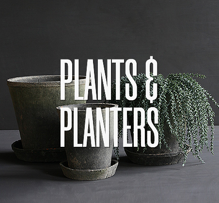 plants-planters